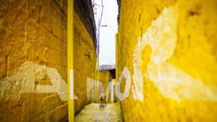 Favela pintada por la comunidad