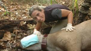 Patricia Medici junto a un tapir