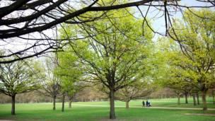 الربيع في لندن