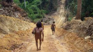 www.survivalinternational.org/awa