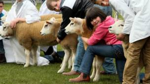 Young farmers exhibiting sheep