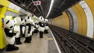 Costumed pandas in London