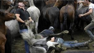 Укрощение лошади в Сабуседо