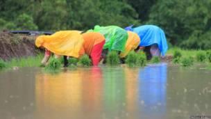 Plastic raincoats