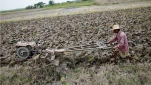 Burmese farmers