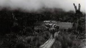 Combatientes de las FARC en los inicios del movimiento