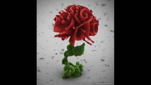 Imagen semejante a una flor, generada a partir de reacciones químicas y captada por un microscopio de barrido electrónico
