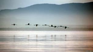 Lago Naivasha, no Quênia