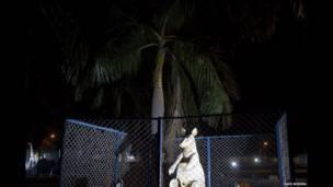 Kebun binatang buatan India