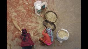 நேபாளத்தில் பெண்கள் தானியங்களை தரம்பிரிக்கின்றனர்