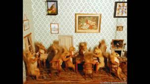 The Squirrels' Club