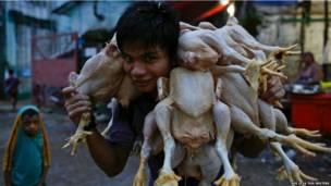 मुर्गा बाज़ार