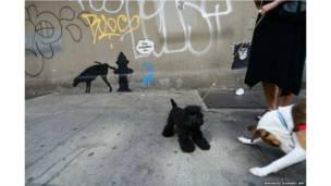 ग्राफिटी, न्यूयॉर्क