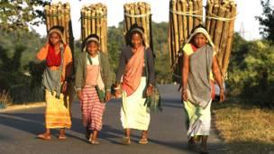 भारत, कृषि प्रधान देश, अर्थव्यवस्था,आदिवासी महिलाएं , आजीविका