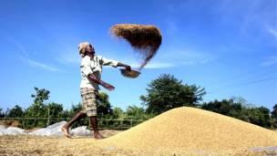 भारत, कृषि प्रधान देश, अर्थव्यवस्था, त्रिपुरा, अगरतला