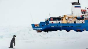 अंटार्कटिक में फंसा रूसी जहाज़ एकेडेमिक शोकाल्स्की