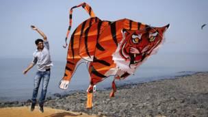 Layangan harimau