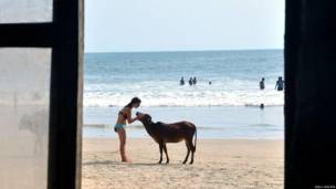 गोवा का समुद्रतट
