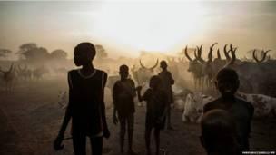 दक्षिणी सूडान, मवेशी