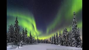 أضواء الشمال وهي تنعكس على الغابة