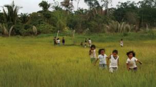 Rondônia'daki Uruewawaw doğal koruma alanında çocuklar futbol oynuyor.