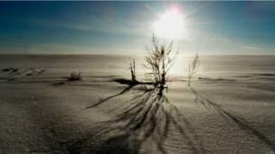 Nesta semana, os leitores da BBC em russo fizeram imagens em que a luz (ou a falta dela) dão o tom