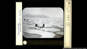Люди на льдине в Гренландии