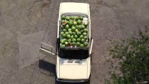 Арбузы на крыше автомобиля