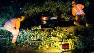 Пожарники втаскивают авто из-под дерева