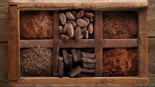 Chocolate variedad