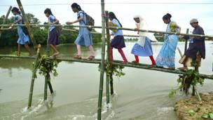 बांस से बने अस्थायी पुल से स्कूल जाते बच्चे.
