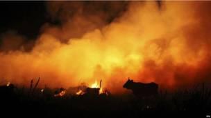 स्पेन में आग