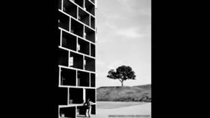 चंडीगढ़ हाईकोर्ट, 1955, लुसीन हर्वे
