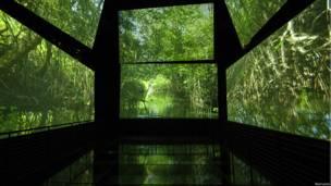 Panamarama en Biomuseo