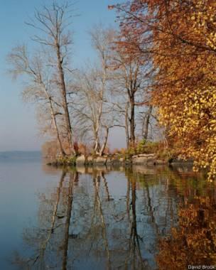"""""""У нас осень уже скоро кончается. Ждём зиму,"""" - комментирует свою фотографию Давид Брук из Екатеринбурга"""