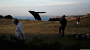 सिडनी समुद्री प्रदर्शनी