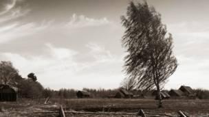 ветер в Псковской области в деревне Заходы