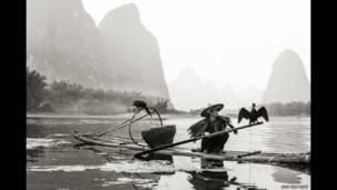 चीन, मछली, सोह येउ कियात