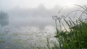 Туман.  восход на реке Чумыш на Алтае.