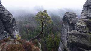 Туман в Сасонской Швейцарии в горах