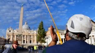 वेटिकन, सेंट पीटर्स चौक, क्रिसमस ट्री