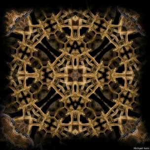 O fotógrafo de natureza Michael Kern cria imagens hipnotizantes com um efeito de caleidoscópio (Michael Kern)
