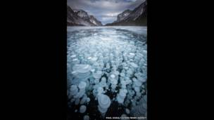 Bolhas de gás metano presas sob a superfície congelada de lago (Foto: Paul Zizka, Cater News)