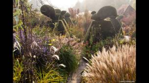 Tavuskuşu bahçesinde sonbahar renkleri, Carol Casselden