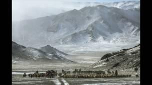 बाज़ शिकारियों की यात्रा