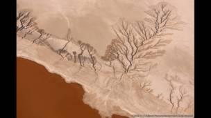 بحيرة موجافي في كاليفورنيا