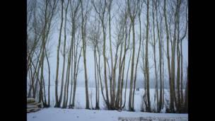 تأثير الوقت، منتصف فصل الشتاء، 2013-2014، سيمون نورفولك
