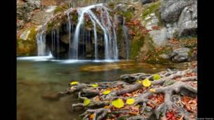 Вікіпедія обрала найкращі фото природи України