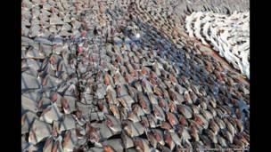 'Homem invisível': artista chinês questiona poder das imagens ao 'hackear' fotos de sites oficiais (Liu Bolin)