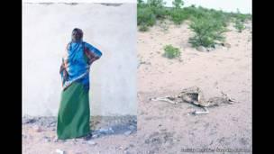 شوكري، 50 عاما، من غارغارا، منطقة أودال، أرض الصومال.